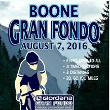 Boone2016